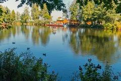 Υπόλοιπο στην ειρήνη πάρκων και την ήρεμη ειρήνη και πάπιες που επιπλέουν ειρηνικά στη λίμνη Στοκ Εικόνες