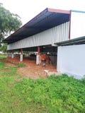 Υπόστεγο βοοειδών στοκ φωτογραφία με δικαίωμα ελεύθερης χρήσης