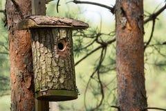 Υπόστεγο για τα πουλιά Στοκ εικόνα με δικαίωμα ελεύθερης χρήσης