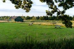 Υπόστεγο στο καλλιεργήσιμο έδαφος Στοκ Φωτογραφία
