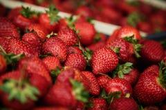 Υπόλοιπα φραουλών σε ένα κιβώτιο Στοκ φωτογραφία με δικαίωμα ελεύθερης χρήσης