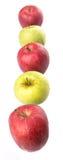 Υπόλοιπος κόσμος της κόκκινης και πράσινης Apple IV Στοκ Φωτογραφία