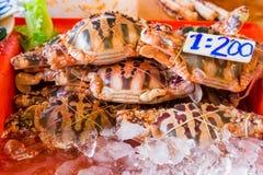 Υπόλοιπος κόσμος των θαλασσινών στην ασιατική αγορά Στοκ Φωτογραφίες