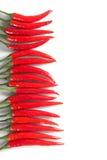 Υπόλοιπος κόσμος των κόκκινων πιπεριών τσίλι Στοκ φωτογραφία με δικαίωμα ελεύθερης χρήσης