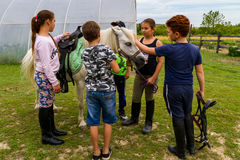 Υπόλοιπο στο ιππικό στρατόπεδο θερινών παιδιών ` s στην Ουκρανία Στοκ Φωτογραφία