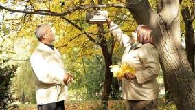 Υπόλοιπο στο πάρκο φθινοπώρου απόθεμα βίντεο