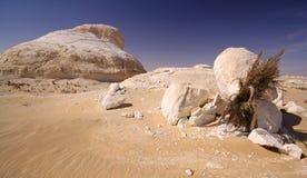 δυτικό λευκό της Αιγύπτου Σαχάρα ερήμων Στοκ φωτογραφία με δικαίωμα ελεύθερης χρήσης