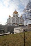 λυτρωτής Χριστού καθεδρικών ναών Στοκ Εικόνα