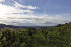 Υψίπεδα Balaton στοκ φωτογραφίες με δικαίωμα ελεύθερης χρήσης