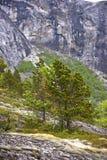 υψηλά βουνά εδάφους Στοκ Φωτογραφία