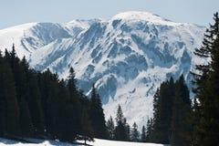 Υψηλά βουνά στο Styria Στοκ εικόνες με δικαίωμα ελεύθερης χρήσης