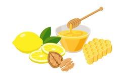 Υψηλά τρόφιμα βιταμινών που τίθενται στο επίπεδο σχέδιο που απομονώνεται στο άσπρο υπόβαθρο Υγιή τρόφιμα άνοσος-ώθησης για την εν ελεύθερη απεικόνιση δικαιώματος