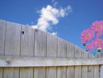 υψηλά χρώματα Στοκ φωτογραφίες με δικαίωμα ελεύθερης χρήσης