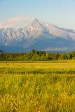 υψηλά tatras της Σλοβακίας στοκ φωτογραφίες με δικαίωμα ελεύθερης χρήσης