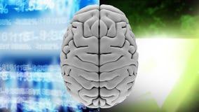 υψηλή ζωτικότητα άποψης γωνίας ενός εγκεφάλου ενάντια στα οικονομικά και ελαφριά αποτελέσματα στοιχείων απεικόνιση αποθεμάτων
