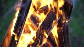 Υψηλός ελαφρύς στενός επάνω πυρκαγιάς φωτιών απόθεμα βίντεο