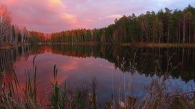 Υψηλός - ποιότητα timelapse, όμορφη δασική λίμνη στην καταπληκτική ανατολή φιλμ μικρού μήκους