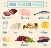 Υψηλός - πρωτεϊνικά τρόφιμα καθορισμένα διανυσματική απεικόνιση