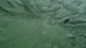 Υψηλό άλμα στον καταρράκτη απόθεμα βίντεο