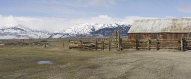 υψηλό αγρόκτημα λιβαδιών βοοειδών Στοκ εικόνα με δικαίωμα ελεύθερης χρήσης