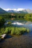 υψηλό βουνό λιμνών ανασκόπη& Στοκ Φωτογραφία
