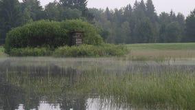 Υψηλό κάθισμα κυνηγιού σε ένα δάσος στη Βαυαρία απόθεμα βίντεο