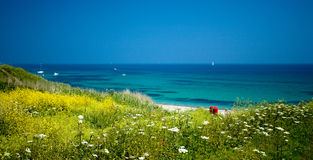 υψηλό καλοκαίρι Στοκ εικόνα με δικαίωμα ελεύθερης χρήσης