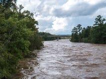 Υψηλό νερό ποταμού από τον τυφώνα Φλωρεντία στοκ εικόνα με δικαίωμα ελεύθερης χρήσης