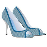 Υψηλό παπούτσι τακουνιών   Στοκ Φωτογραφία