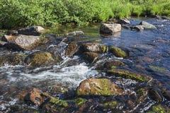 Υψηλά ορμητικά σημεία ποταμού και βρύο χωρών Στοκ φωτογραφία με δικαίωμα ελεύθερης χρήσης
