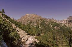 Υψηλά Tatras - Vysoke Tatry - τρόπος σε Popradske Pleso Στοκ εικόνες με δικαίωμα ελεύθερης χρήσης