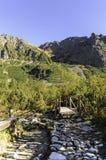 Υψηλά Tatras - Vysoke Tatry - τρόπος σε Popradske Pleso Στοκ Εικόνες