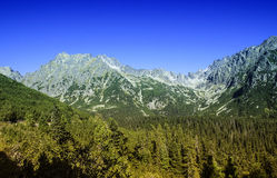 Υψηλά Tatras - Vysoke Tatry - τρόπος σε Popradske Pleso Στοκ Φωτογραφία