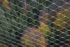 Υψηλή γωνία που πυροβολείται του μαύρου δάσους πίσω από το φράκτη Στοκ Φωτογραφίες