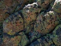 Υψηλή οροσειρά αλπικοί βράχοι πεύκων λιμνών Στοκ φωτογραφία με δικαίωμα ελεύθερης χρήσης