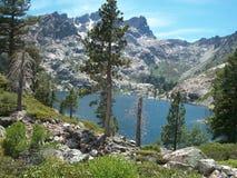 Υψηλή οροσειρά αλπικοί βράχοι πεύκων λιμνών στοκ εικόνες
