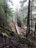 Υψηλό επάνω mountainside Στοκ Φωτογραφίες