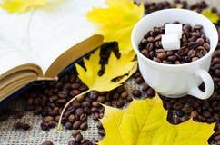 υψηλό θέμα ανάλυσης εικόνας λουλουδιών καφέ Στοκ φωτογραφία με δικαίωμα ελεύθερης χρήσης