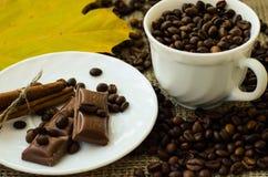 υψηλό θέμα ανάλυσης εικόνας λουλουδιών καφέ Στοκ Εικόνες