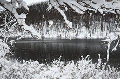 Υψηλό οριζόντιο χειμερινό τοπίο αντίθεσης Στοκ Εικόνα