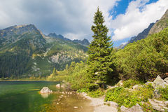 Υψηλό Tatras - η ακτή της λίμνης Popradske Pleso Στοκ Φωτογραφίες