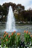 Υδάτινα έργα στο πάρκο Στοκ φωτογραφία με δικαίωμα ελεύθερης χρήσης