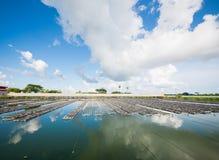 Υδατοκαλλιέργεια στο Μιανμάρ Στοκ Φωτογραφίες