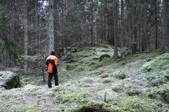 Υλοτόμος βαθιά στο δάσος Στοκ Εικόνες