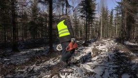 Υλοτόμος με το αλυσιδοπρίονο και καφές στο δάσος το χειμώνα απόθεμα βίντεο