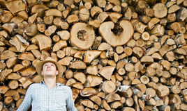 Υλοτόμος με το καπέλο αχύρου σε ένα υπόβαθρο του ξύλου Στοκ Εικόνες