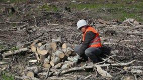 Υλοτόμος που εργάζεται στο δάσος απόθεμα βίντεο