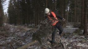 Υλοτόμος που εργάζεται στο δάσος φιλμ μικρού μήκους