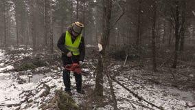 Υλοτόμος που προσπαθεί να αρχίσει το αλυσιδοπρίονο στο δάσος απόθεμα βίντεο