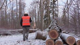 Υλοτόμος που χρησιμοποιεί το σπασμένο δέντρο ταμπλετών πλησίον στο δάσος φιλμ μικρού μήκους